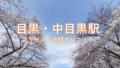 img 5e534c516ef18 120x68 - 中野駅:プラセンタ注射の最安はココ!全4クリニック比較